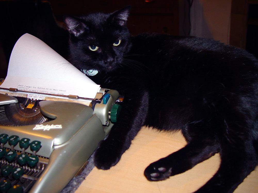 I like cats & typewriters