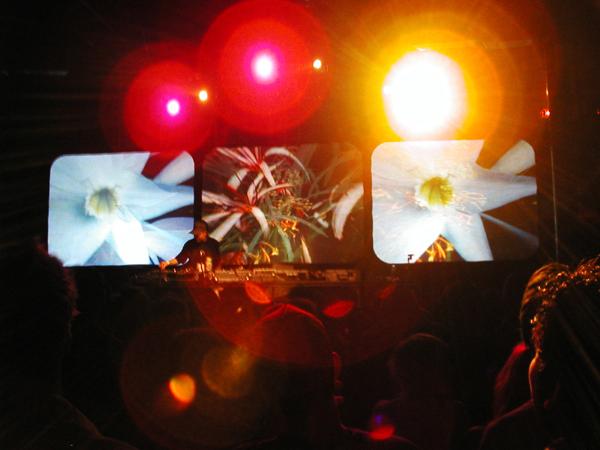 "DJ Shadow's 1999 ""Goodwill"" Tour."